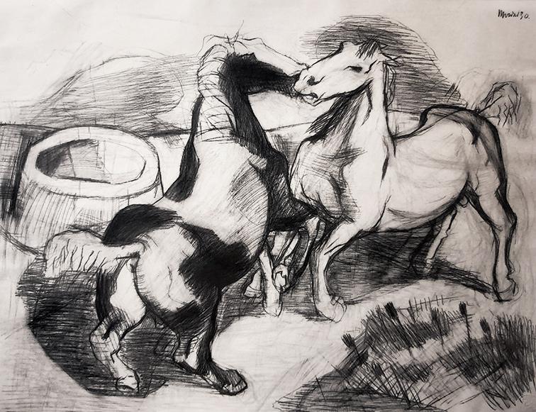 Studium Pferde Natur 1930